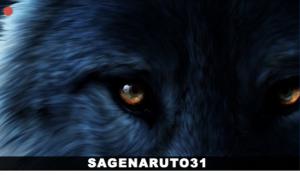 twitch sagenaruto31